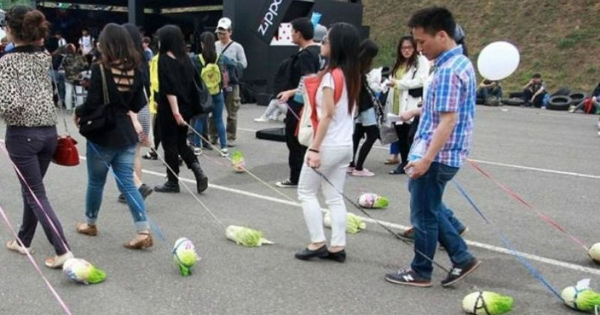REPORT: Vegans Walking 'Cabbages' Instead of Dogs in Trend to Cure Depression - National File